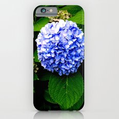 Blue Flower (Edited) Slim Case iPhone 6s