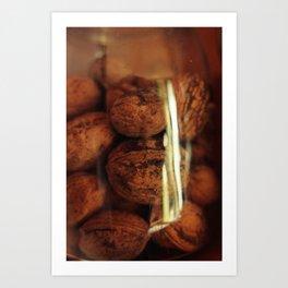 Nuts in a jar Art Print