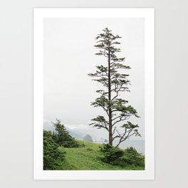 Oregon Coast #2 - Nature, Landscape Photography Art Print