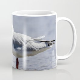 Silver Gull standing in Shallow Water Coffee Mug