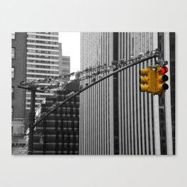 Pigeons in Manhattan Canvas Print