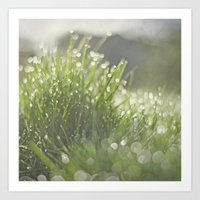 grass Art Prints featuring Grass by Pure Nature Photos