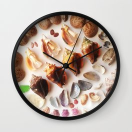 Cockles & Conch Wall Clock