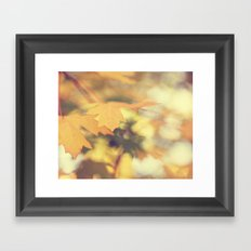 Autumns Yellow Framed Art Print