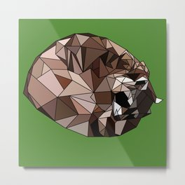 Sleeping raccoon Metal Print
