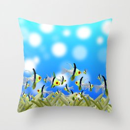 Aquarium of Colorful Fishes, Blue Bokeh Background Throw Pillow