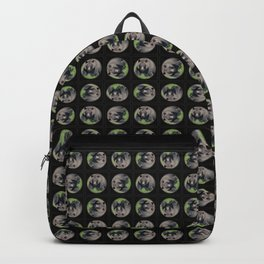 Brown Bear - Alaska Backpack