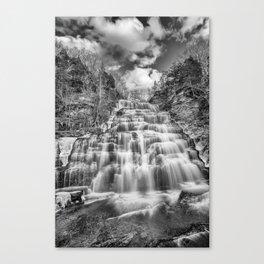 winter falls in B&W Canvas Print
