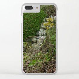 Wall at Church Cove Clear iPhone Case
