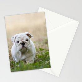 Walking Wrinkles Stationery Cards