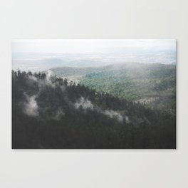 Clouds in the forest Canvas Print