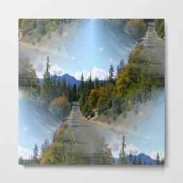 Which road shall I take? Metal Print