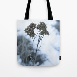 The Beauty of it cold Tote Bag