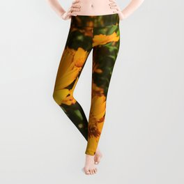 Sunshine Sprouts Leggings