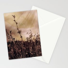 Last flowers of autumn Stationery Cards