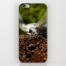 Ready For Take-Off iPhone & iPod Skin