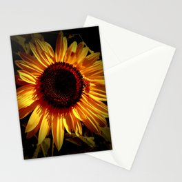 Sunflower with Orange Tint Stationery Cards