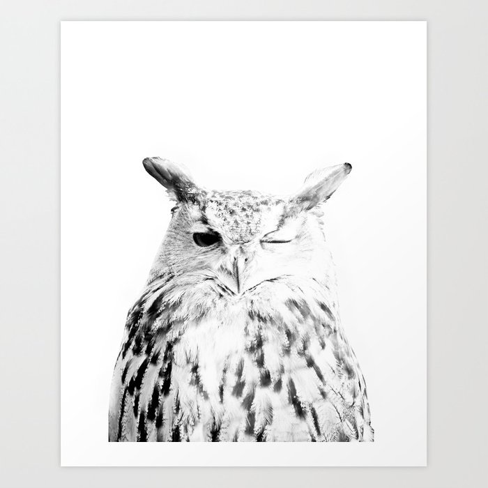 Owl print scandinavian modern wall art black and white art print