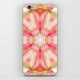 Mandalas of Forgiveness & Release 10 iPhone Skin