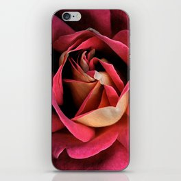 pink rose water color iPhone Skin