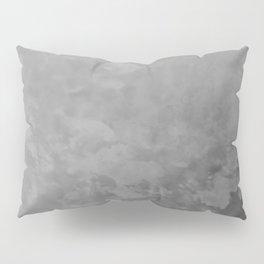 AWED MSM Flood (2) Pillow Sham