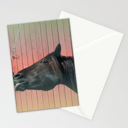 Canadian Horse Stationery Cards