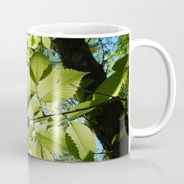 Sunlight Canopy V Coffee Mug