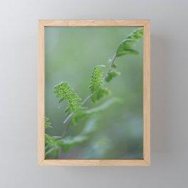 Bracken Framed Mini Art Print