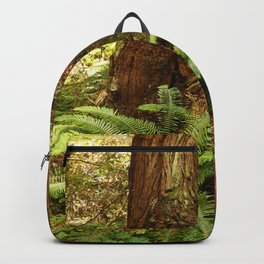 Fern and Sequoia Trunks Backpack