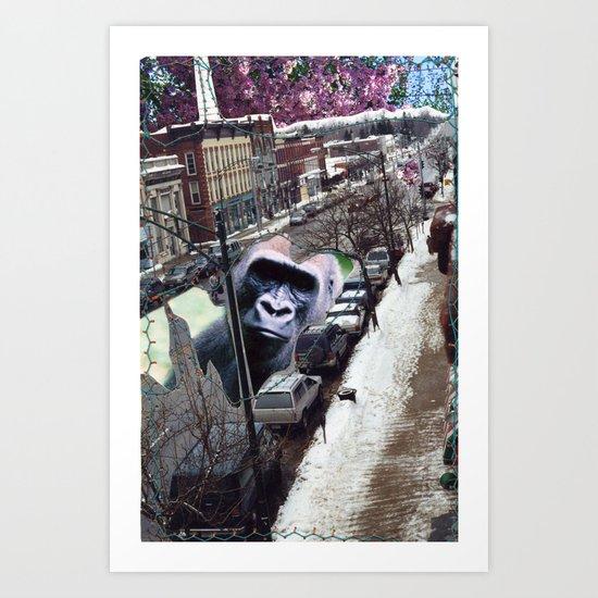 Potsdam Gorilla Art Print