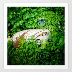 Abandoned Beetle Art Print