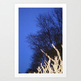 Trees #1 Art Print