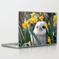 rocky Laptop & iPad Skins featuring Rocky by Astrid Ewing