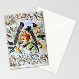 Adolphe Millot - Oiseaux B - French vintage poster Stationery Cards