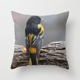 A Very Dignified Baltimore Oriole Throw Pillow