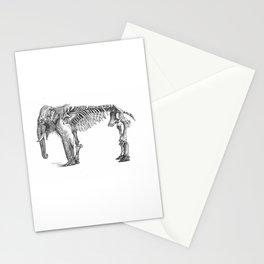 Elephant Osseous Skeleton Stationery Cards
