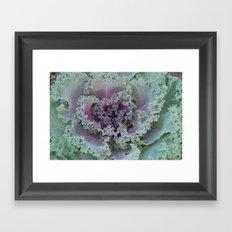Cabbage Fractal Framed Art Print
