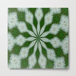 Taraxacum Officinale Seed  Metal Print