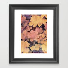 ornamental leaves in the garden Framed Art Print