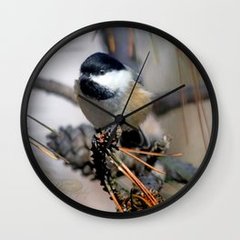 October chickadee in the pines Wall Clock