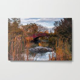 Autumn Color of The Pond in Central Park New York City Metal Print