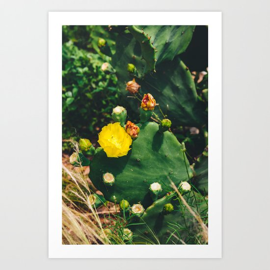 Gimme All Your Love Art Print