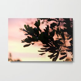 silver lake sunset Metal Print