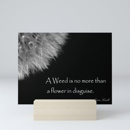 Black and White Fluffy Dandelion Weed Seed Head with Quote  Mini Art Print