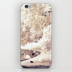 Infrared Trees Nature Landscape With Flamingos iPhone & iPod Skin