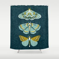 Lepidoptery No. 8 by Andrea Lauren  Shower Curtain