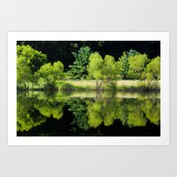 Peaceful Reflection Art Print