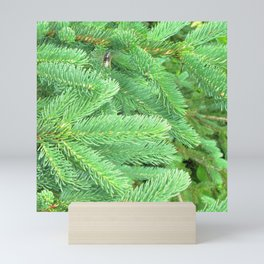 Watercolor Tree, Part, Spruce 01, Cape Breton, Nova Scotia, Canada, Verdant Green Mini Art Print