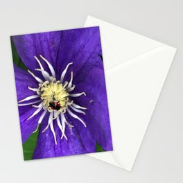A bright purple Clematis and a bug Stationery Cards