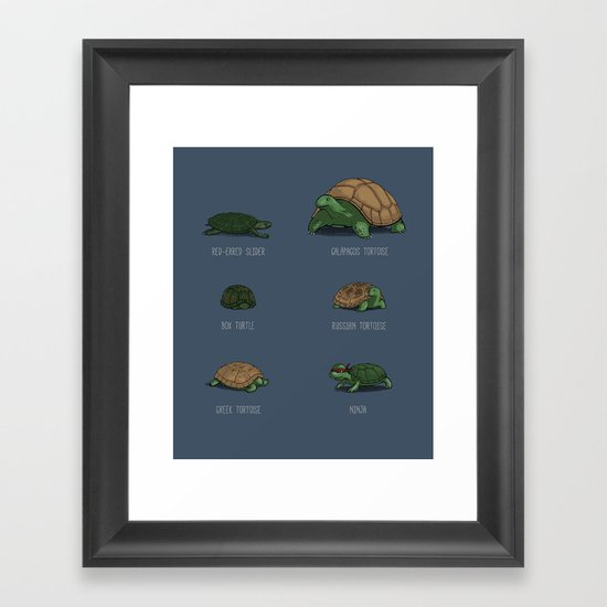 Know Your Turtles Framed Art Print